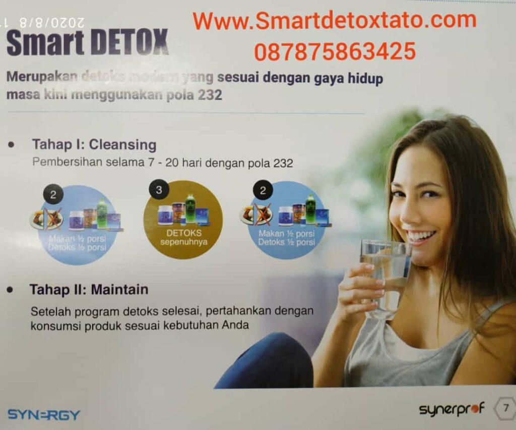 Detox Modern  buang Racun dan Tubuh Sehat Synergytato 087875863425